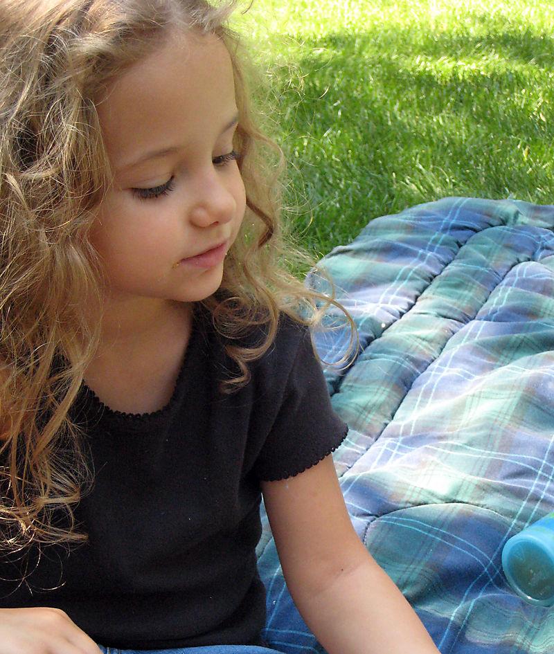 Lexi picnic